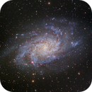 M33 The Triangulum Galaxy,                                Shannon Calvert