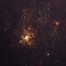 Tarantula Nebula NGC2070,                                Michael