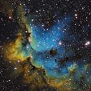 Sh2-142 - NGC7380 - Wizard Nebula,                                Andy Wellington