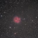 Cocoon Nebula,                                Ivaylo Stoynov