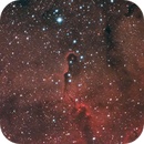IC 1396 - Elephant's Trunk Nebula,                                Evelyn Decker