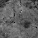 IC1396 - Elephant's Trunk in Ha,                                Richard Bratt