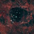 Heart of the Rosette Nebula,                                Donovan