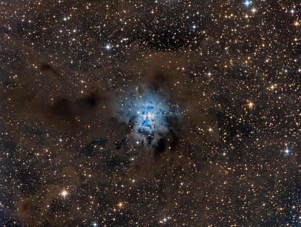 NGC7023 Iris nebula Field,                                  Toni Mancera
