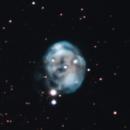 NGC 7008,                                Gary Imm