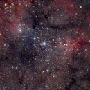 Elephant Trunk Nebula IC 1396 (147'),                                star-watcher.ch