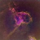 Heart Nebula,                                Miles Zhou