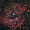 Rosette-Nebula,                                Vince