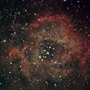Rosette Nebula,                                Dan Kubala