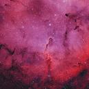Elephant Trunk Nebula IC1396,                                Gary Crawford