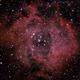Rosette Nebula - NGC 2239,                                Alan Mason