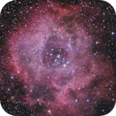 NGC2244 Rosette Nebula,                                Mathias Radl
