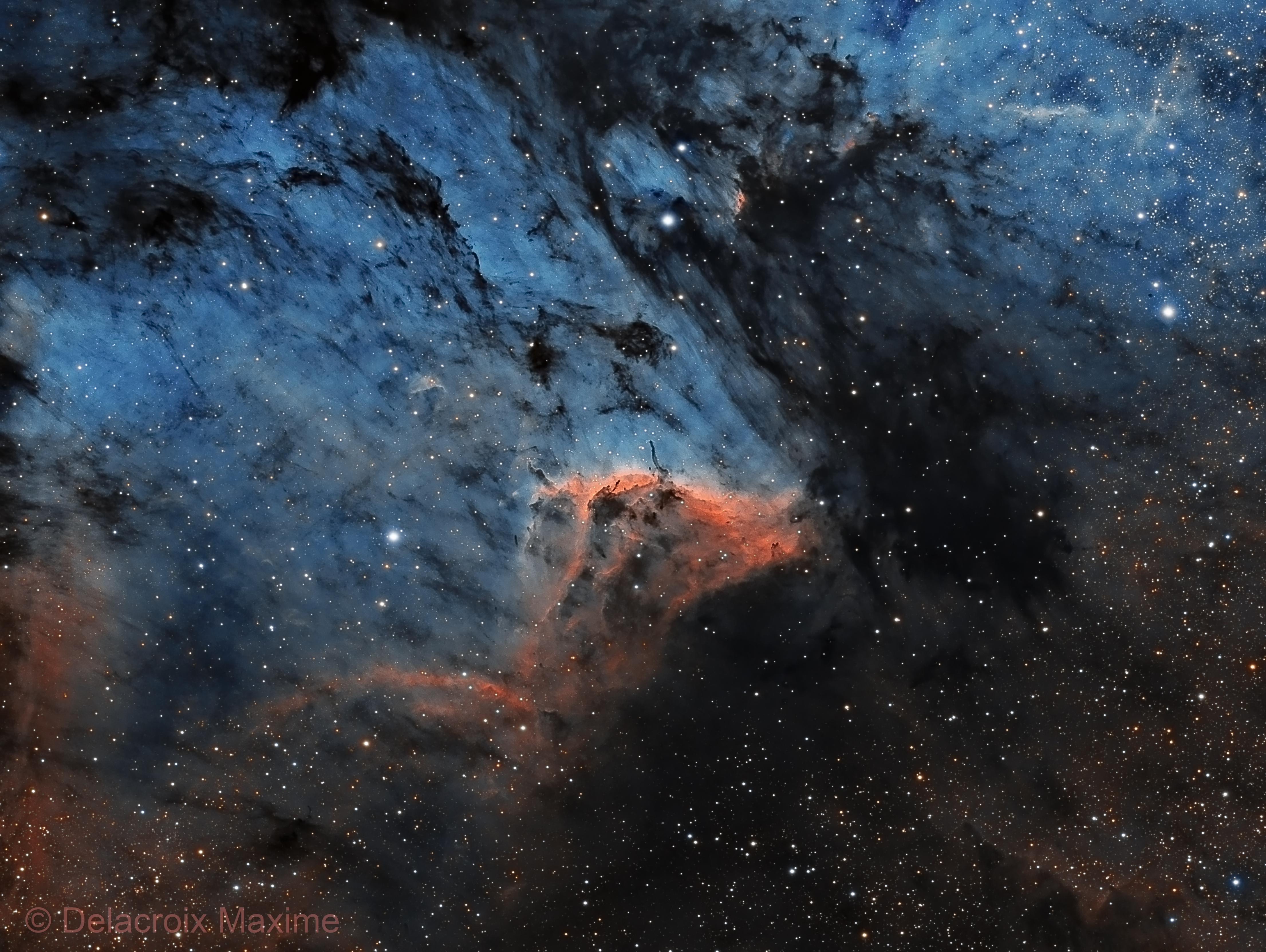 Pelican nebula SHO,                                Maxime Delacroix