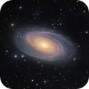Bode 's Galaxy M81 - V3.1 Wide Field,                                Arnaud Peel