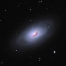 Messier 64 - The Black Eye Galaxy,                                Ryan Wierckx
