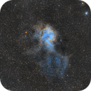LDN 1161 Lion Nebula,                                Russell McKenzie