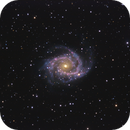 NGC 2997 Spiral Galaxy in Antlia,                                Don Pearce
