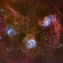The Flaming Star and Tadpoles Nebulae,                                Kasra Karimi
