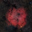 IC 1396,                                Björn Gludau