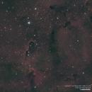 Elephant's Trunk Nebula,                                Landon Boehm