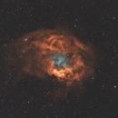 Sh2-261 Lower's Nebula,                                Elmiko