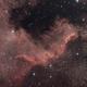 NGC7000,                                Astro_Pulsar
