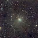 NGC1333,                                Ray Heinle