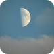Moon in blue sky,                                Vital