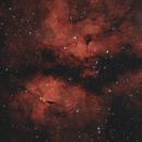 Butterfly nebula,                                Tom914