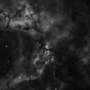 NGC 2237 NGC 2238,                                Jerry Huang