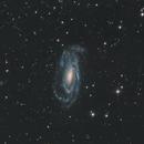 NGC 5033,                                John Leader
