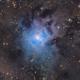 NGC 7023, The Iris Nebula,                                Scott