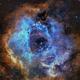NGC2239 Rosette Nebula 2 panel Mosaic,                                Matthew Chan
