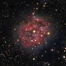 IC5146 - Cocoon Nebula,                                Almos Balasi