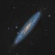 NGC 253 - Sculptor Galaxy (Theli, APF-R, v4),                                Martin Junius