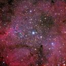 IC 1396 + vdB 142 - Elephant's Trunk nebula  ,                                Giorgio Ferrari
