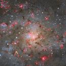 Triangulum Galaxy M33,                                Chris R White