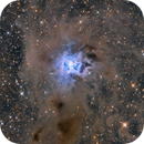 NGC 7023 Iris Nebula,                                Jarrett Trezzo