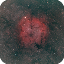 IC1396 wide field,                                Martin Dufour