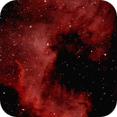NGC 7000,                                Wiser