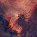 NGC7000,                                Astrorin