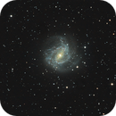 Messier 83,                                Andrew Wall
