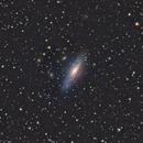 NGC 7331,                                StefanoBertacco