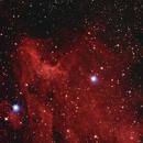 Pelican Nebula , IC 5070 , IC 5067,                                Sadaaki Takeichi