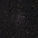 M46,                                Shannon Calvert
