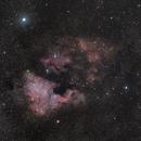 NGC 7000 Wide field,                                Quentin Pelletier
