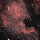 NGC7000-North America Nebula and IC5070-Pelican Nebula,                                Nightsky_NL