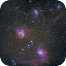 IC410 Flaming Star,                                Zak Foreman