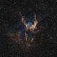 NGC 2359 - Thor's Helmet (Bicolor),                                Frank Breslawski