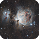 M 42 Orion Nebula,                                Michael Timm